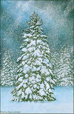 Lone Spruce by Kristin Hurlin @ glenarborartisans.com