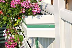 Blütenlandschaft mit herrlichem Ausblick