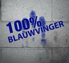 .Zwolle -Blauwvingers