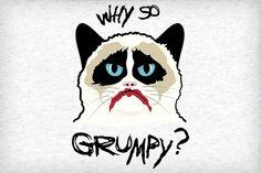 Why So Grumpy? (t-shirt)