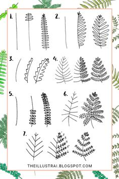 In this tutorial, I teach you how to draw 7 different types of fern leaves by breaking them down, step by step. Click through to see the full tutorial >>