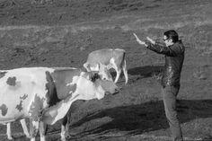 Making off, Werbedreh Saalfelden Leogang 2013 Tv Commercials, Animals, Animales, Animaux, Tv Adverts, Animal, Animais