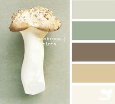 mushroom tints kleuren