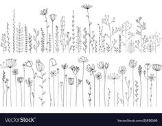 Zentangle Doodle Drawing Lineart Zeichnen Skizzieren Sketch Concept Art Digital Painting Drawing herbs and flowers Royalty Free Vector Image Abstract Drawings, Doodle Drawings, Tattoo Drawings, Tattoos, Bullet Journal Ideas Pages, Bullet Journal Inspiration, Flower Sketches, Drawing Flowers, Flower Drawings