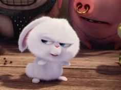 Cute Bunny Cartoon, Cute Cartoon Pictures, Cartoon Pics, Cute Pictures, Rabbit Wallpaper, Bear Wallpaper, Snowball Rabbit, Pets Movie, Funny Disney Memes