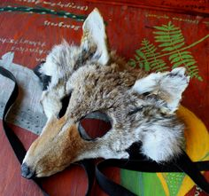 Coyote taxidermy mask by Lupa. At http://thegreenwolf.etsy.com