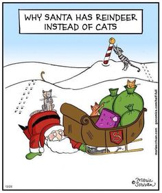 True story...this pretty much sums up my Christmas and I only have one here!