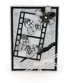 MT504d Negative Butterfly Card