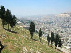 فلسطين - جبل جرزيم نابلس و له عده مسميات اخرى منها جبل الطور و جبل المﻻئكه و هو جبل خالي من اﻻشجار اﻻ بعض شجر الزيتون