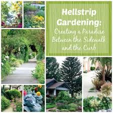 Image result for Hell strip gardening