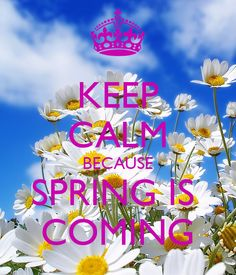 keep calm spring - Google Search