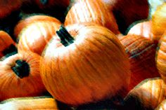 Pumpkin is a great, cheap, underused source of beta-carotene. Forgo the high-fat crust of a pumpkin pie and enjoy this scrumptious, easily prepared dessert. Cheese Recipes, Soup Recipes, Cooking Recipes, Eat Your Books, Pumpkin Custard, Beta Carotene, Fresh Apples, Baking Cups, Mushroom Soup
