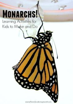 Learn with Monarchs! Monarch books, monarch writing, monarch field trip ideas, and monarch crafts
