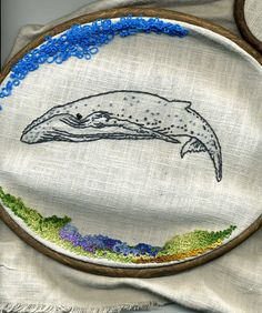 Lovely whale.