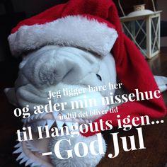 Ses vi til nytårskur? Tilmeld dig her: http://onlinehaj.dk/planlagte-webinarer/