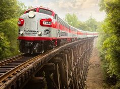 Trips in KY Take a train ride through the Kentucky countryside. Kentucky Attractions, Kentucky Vacation, Weekend Trips, Day Trips, Weekend Getaways, Dinner Train, Land Between The Lakes, Lost River, Great Vacations