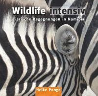 Wildlife intensiv - Tierische Begegnungen in Namibia - Heike Ponge: Inspiriert durch eine zweieinhalbwöchige Foto-Safari durch Namibias Wildnis im August 2015 ist dieses Buch entstanden - ein Foto-Kunst-Buch http://www.epubli.de/shop/buch/Wildlife-intensiv-Heike-Ponge-9783741810428/51974#beschreibung #fotobuch #fotografie #namibia #afrika