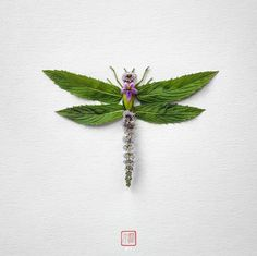 In his insect art series, Natura Insects, artist Raku Inoue delicately crafts colorful floral arrangements that look like bugs. Art Floral, Deco Floral, Diy Y Manualidades, Bug Art, Parts Of A Flower, Pressed Flower Art, Colossal Art, Insect Art, Leaf Art