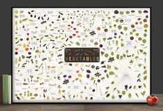 The Various Varieties of Vegetables {poster} http://popchartlab.com/products/the-various-varieties-of-vegetables