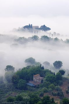 Morning Mist In Val D'Orcia, Tuscany, Italy