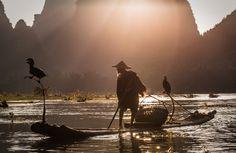 Cormorant fisherman on Li River by Terje Madsen on 500px