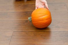 Halloween Physical Education Games (with Pictures)   eHow
