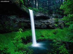 Silver Falls State Park, OR. You can walk a trail that goes under/behind the falls! (btdt)