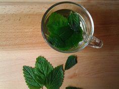 Thee met verse citroenmelisse en munt