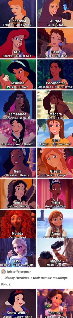 Disney Heroines + meaning of their names (Favorite Meme Awesome)