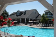 Reading poolside in Windsor, CA at the timeshare with snacks and drinks.