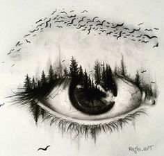 art, eye, and bird image