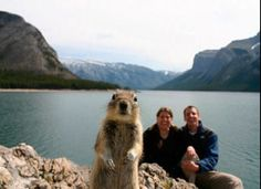 {squirrel photo bomb} ok, this is making me LOL way too much. silly squirrel
