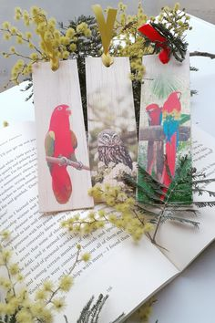 Keep track of your place in a favourite book, journal or magazine with these unique handmade wood bird bookmarks. You will no longer need to reach for an old receipt or scrap of paper to mark your place…and no more folding the corners of pages! Each bookmark is handmade in Australia using lightweight, flexible wood, gorgeous photo image transfer and finished with coloured ribbon. #stitchandwood #bookmark #bird #kingparrot #owl #macaws #giftidea Flexible Wood, Wood Bird, Handmade Items, Handmade Gifts, Book Journal, Bookmarks, Gift Tags, Mall, Scrap