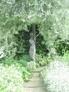 Weeping Silver Pear , Sissinghurst