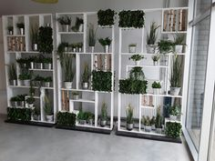 Flora Facto created the wooden white wall with artificial plants.