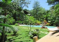 Objektbeschreibung:  Diese sehr schöne Lodge mit Restaurant liegt direkt an der Straße nach Puerto Viejo - Karibik.  Die Lodge verfügt über 14 sehr geschmackvoll eingerichtete Bungalows umgeben von 2 ha faszinierendem Regenwald.   Der Strand - Playa Chiquita kann zu Fuss über einen privat Weg in ca. 5 Minuten erreichet werden.  Das große und sehr schön gelegene Pool bietet die Alternative zum Bad im Meer.  Die Lodge ist ein beliebtes und internationales Reiseziel für Touristen.