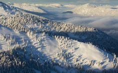 Sitting 30 min off the United States boarder and a two hour drive from Spokane Washington, Red Mountain Ski Resort is a secret gem in the Canadian mountains. With great tree skiing and Canadian pow, this ski resort will not disappoint.