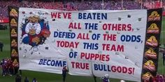 Image result for bulldogs grand final afl banner Western Bulldogs, Australian Football, Great Team, All The Way, Red White Blue, Doggies, Banners, Action, Puppies