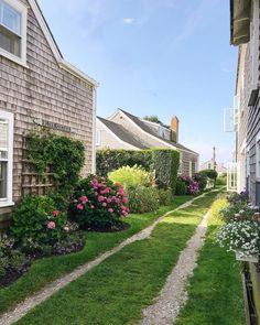 Where my head and heart is today. ✨ (which is making my to-do list a little daunting. Nantucket Cottage, Nantucket Style, Head And Heart, Garden Trellis, New England, Sidewalk, Exterior, Photo And Video, Lifestyle