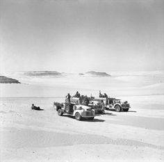 Three Long Range Desert Group 30-cwt Chevrolet trucks, surrounded by desert. May 1942