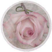 Pink Rose Beauty  Round Beach Towel by Sandra Foster. #rose #pinkrose #sandrafoster