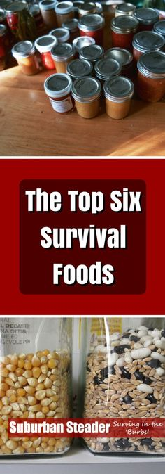 These are the top six survival foods essential for preparedness and survival.