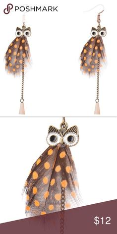 "Owl Earrings Cute owl earrings with feather and tassel. About 4"" in length. New in package. Jewelry Earrings"