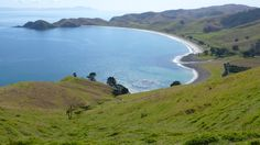 Port Jackson in the Coromandel; our Summer home away from home.