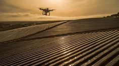 What can NDVI drones do for my business? Part 1