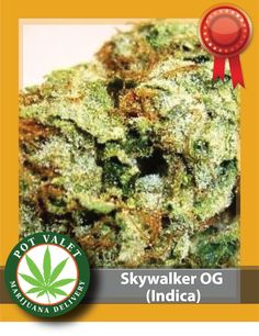 Want to reduce pain, or bring about a relaxing sleep? If yes, then the Skywalker OG strain of cannabis is for you. Enjoy the sativa properties of this variety of marijuana, It offers you a high without being hazy and impairing your ability to carry out your daily routine. Now, What are you waiting for? Call now for Medical Marijuana delivery today. Want to know more?  Call us at 1800-357-1314
