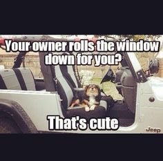 Prudence already loves the Jeep! Can& wait to ride topless with her! Jeep Meme, Jeep Humor, Jeep Jk, Jeep Truck, Jeep Funny, Car Humor, Jeep Wrangler Quotes, Jeep Quotes, Jeep Sayings