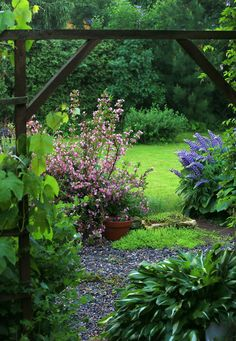 Andrey's garden in RUSSIA--Click through to see more!