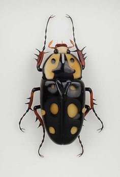 Beetle www.lab333.com https://www.facebook.com/pages/LAB-STYLE/585086788169863…