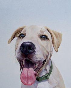 """""""Murphy"""" 12"""" x 15"""", oil on canvas, 2013"""